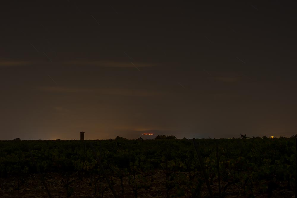 Artist-in-Residence, Rhapsodic Night Landscape Photographs and Exhibition in France: Vineyards West