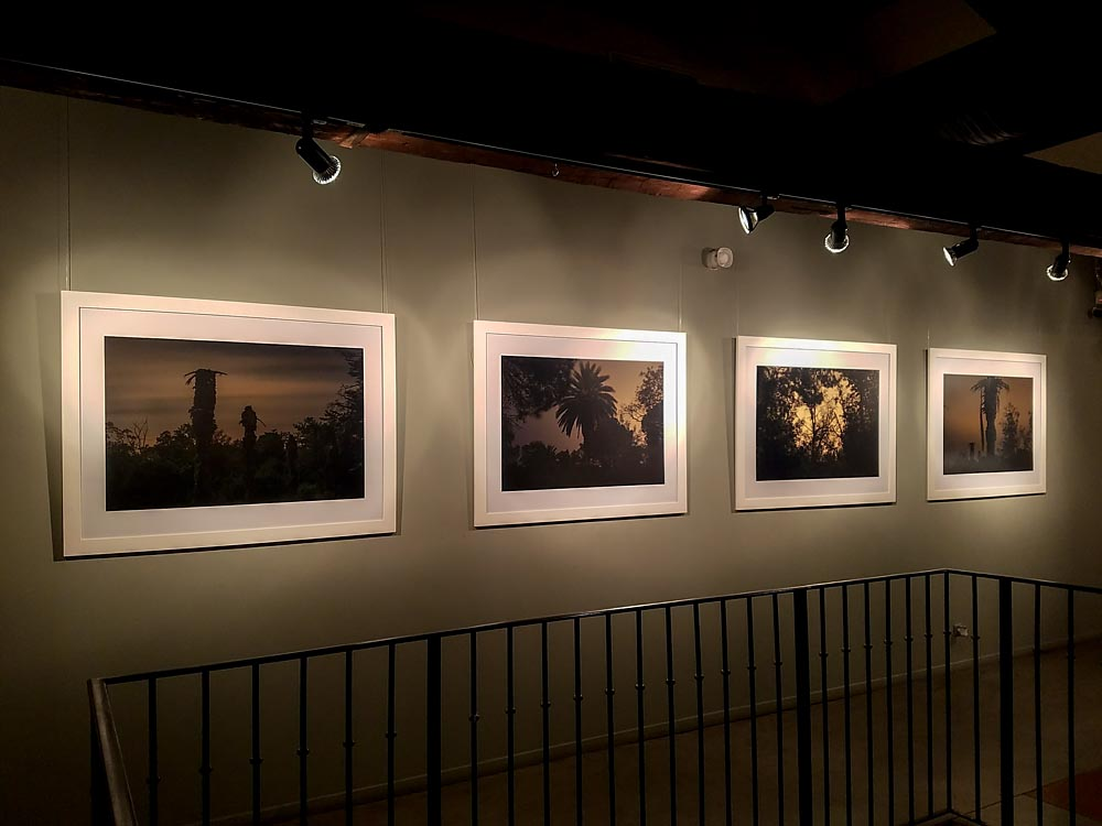 Artist-in-Residence, Rhapsodic Night Landscape Photographs and Exhibition in France, Show