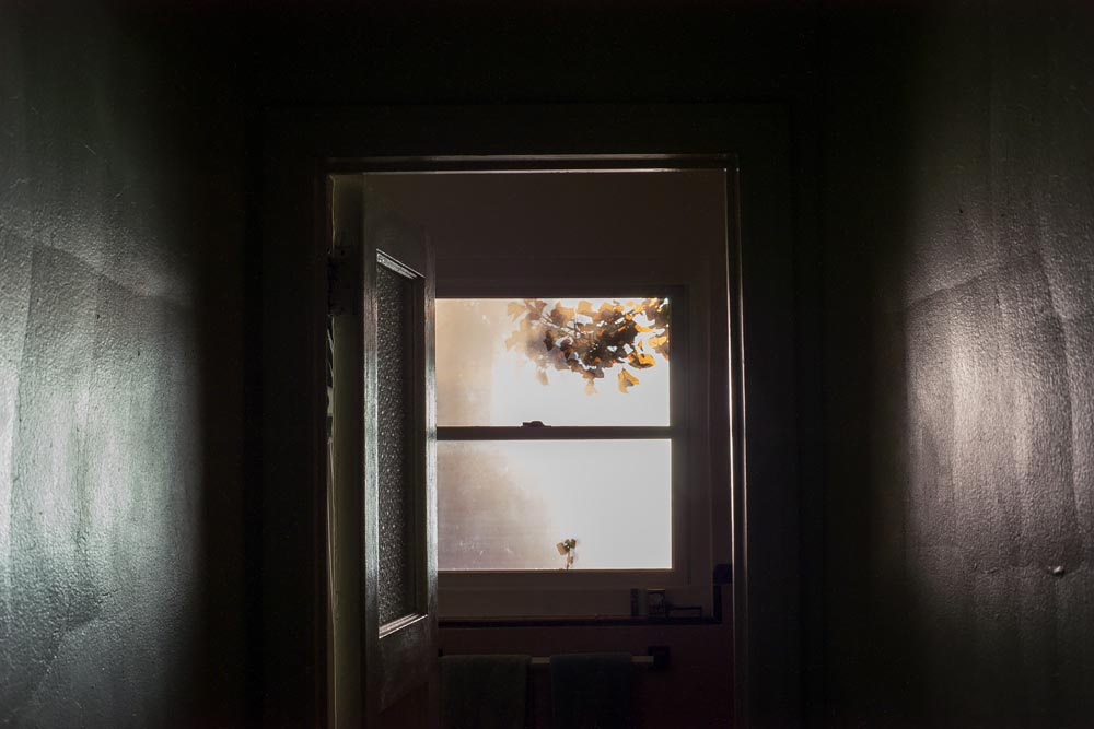 Fine art photography commission (night window) for Monegraph, Steve Giovinco