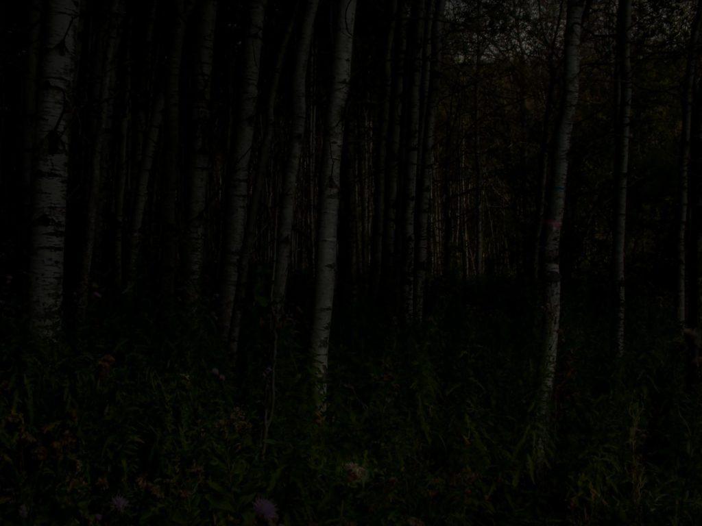 end-of-world-fine-art-photography-night-landscapes-steve-giovincodscn3067_05