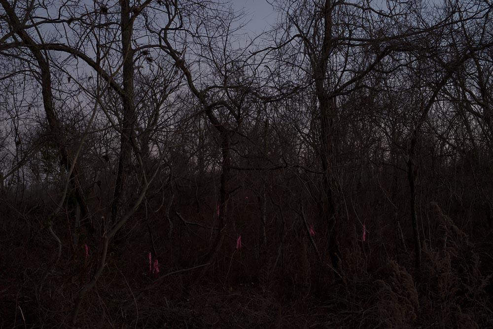 Night Landscape Photographs: Hurricane Sandy in Broad Channel, Steve Giovinco DSC887