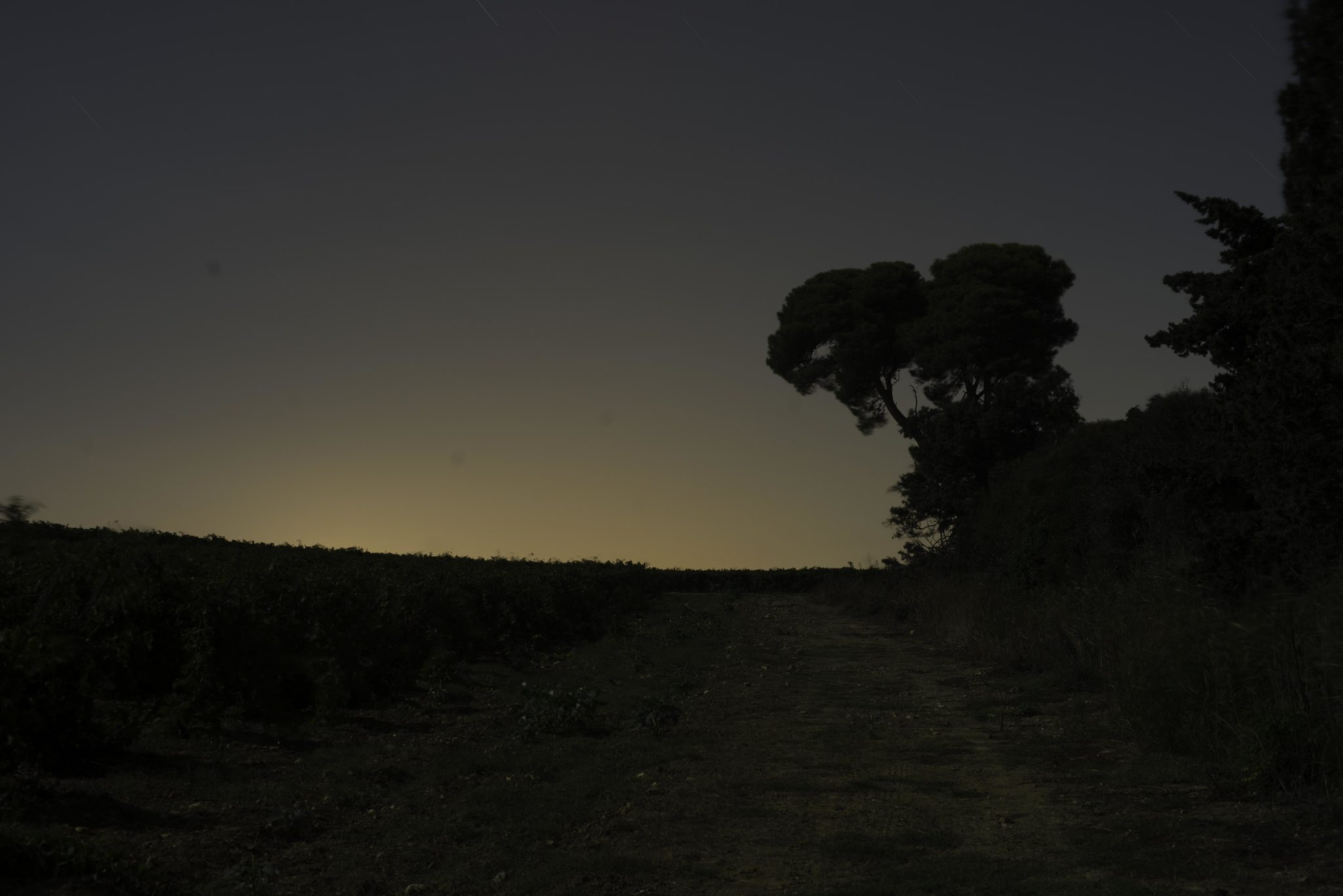 Artist-in-Residence, Rhapsodic Night Landscape Photographs and Exhibition in France, Environment