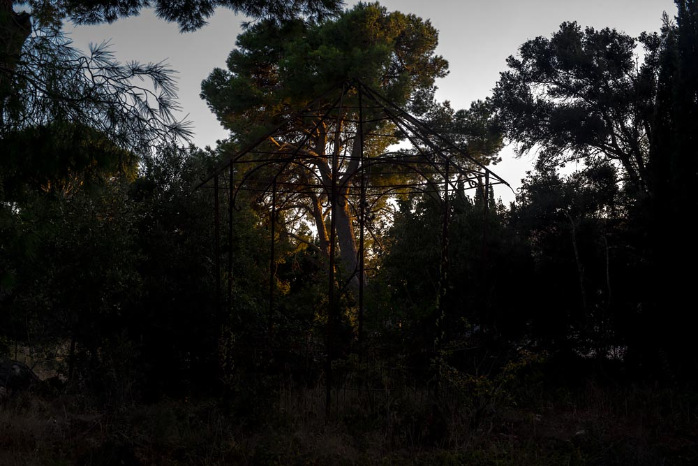 Artist-in-Residence, Rhapsodic Night Landscape Photographs and Exhibition in France: Trees in Cage